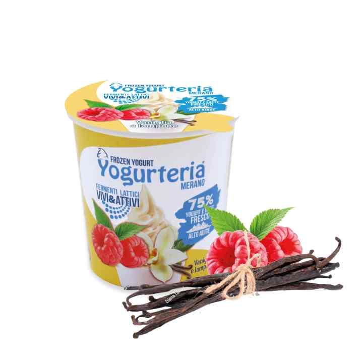 Frozen Yogurt alla vaniglia e lampone