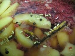 apple raspberry ferment