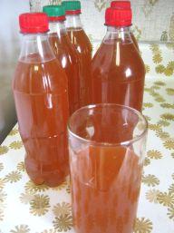 bottled tepache