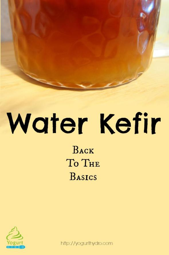 Water Kefir: Back to the Basics