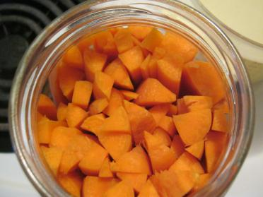no whey lacto fermented dilly carrots