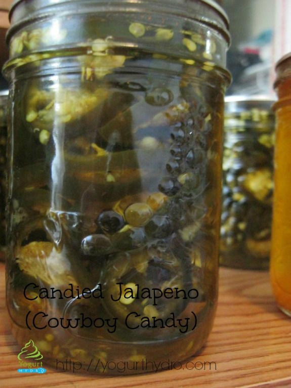 Cowboy Candy (Candied Jalapeños)