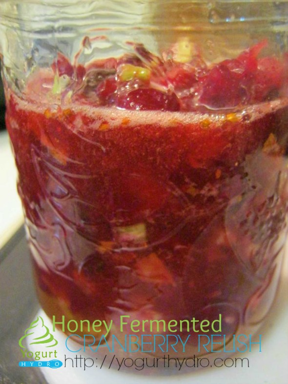 Honey Fermented Cranberry Relish Sauce