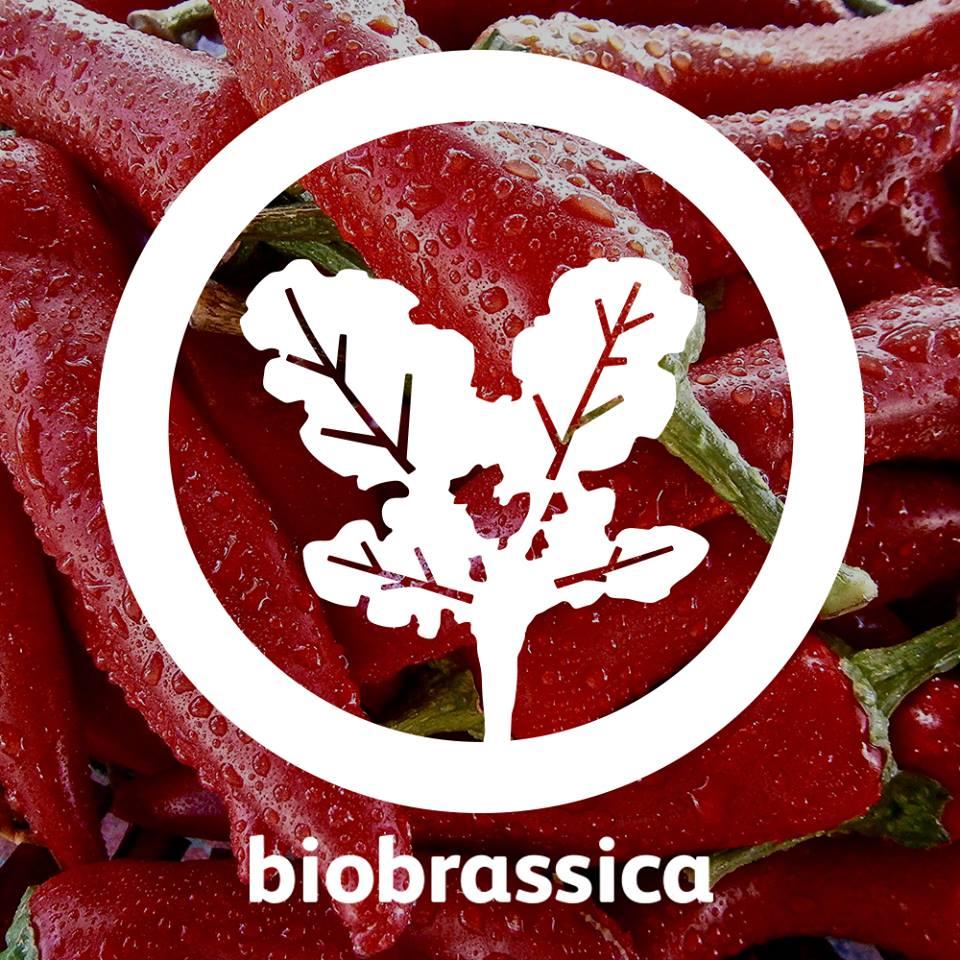 BioBrassica de Braga