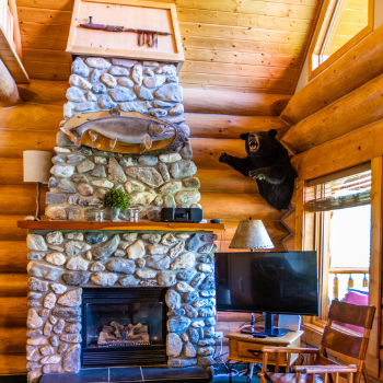 interior view of chalet living room