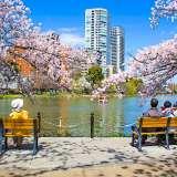 東京観光1日モデルコース