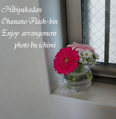 hibiya5