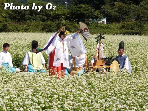 平成19年 福島町 千軒そばの花鑑賞会 松前神楽 鈴上舞