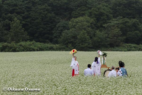 福島町 千軒そばの花鑑賞会 2013 松前神楽 八乙女舞