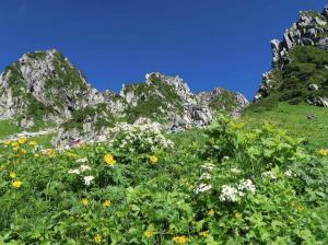 11千畳敷カール登山道より宝剣岳を望む