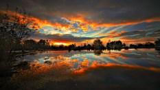 sunset-scenic