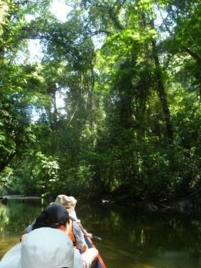 19-Langsat River Walk (800x600)
