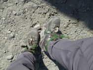 In-step crampons