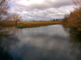 02-lake wendouree (800x592)