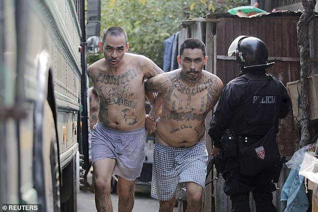 太流氓了吧!薩爾瓦多連續兩天沒有兇殺案,全國居家隔離後發布的影片竟然是 Gangster 所為?! 6