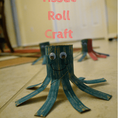 Toilet Tissue Roll Craft