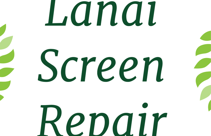 Lanai Screen Repair