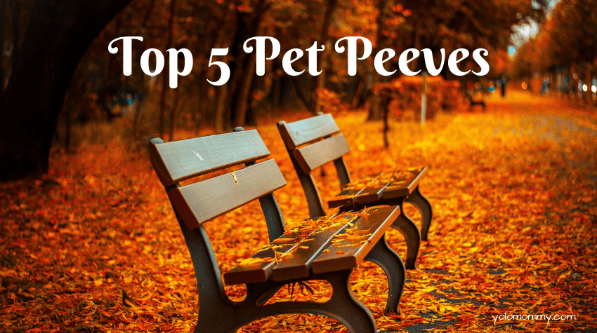 Top 5 Pet Peeves