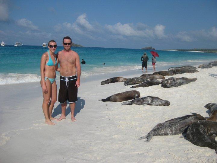 espanola island beach, Gardner bay beach, Galapagos beach, sea lions