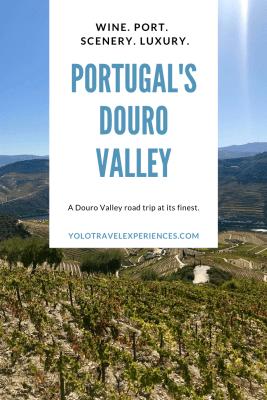 wine tasting portugal