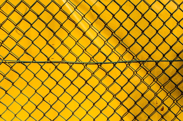 the-fence-428562_640