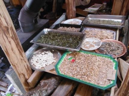 drying squash seeds