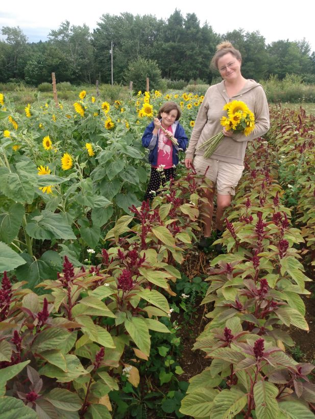 Chris and Ruth in amaranth with sunflowers