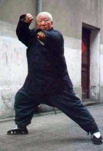 Fu Zhong Wen