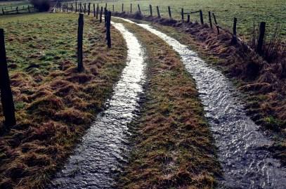 Walking between streams