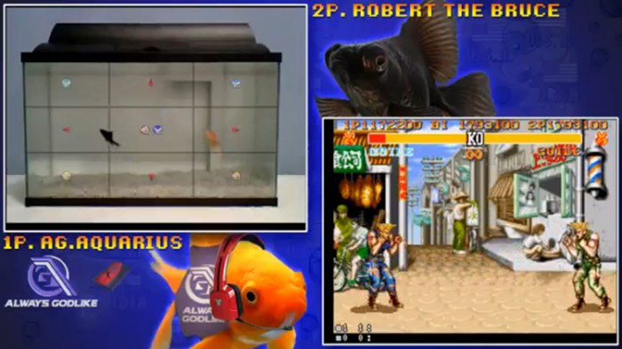 poisson Street Fighter 2