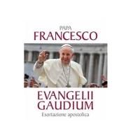 Resumen de la Exhortación Apostólica, Evangelii Gaudium (La Alegría del Evangelio), del Papa Francisco