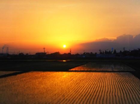 sunset_l
