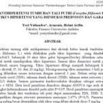Efek Antihipertensi Tumbuhan Tali Putri (Cassytha filiformis L.) pada Tikus Hipertensi Yang Diinduksi Prednison dan Garam