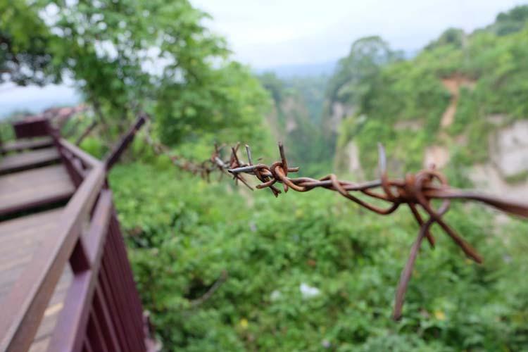 Pagar kawat dengan latar Ngarai Sianok di Ngarai Maaram Bukittinggi