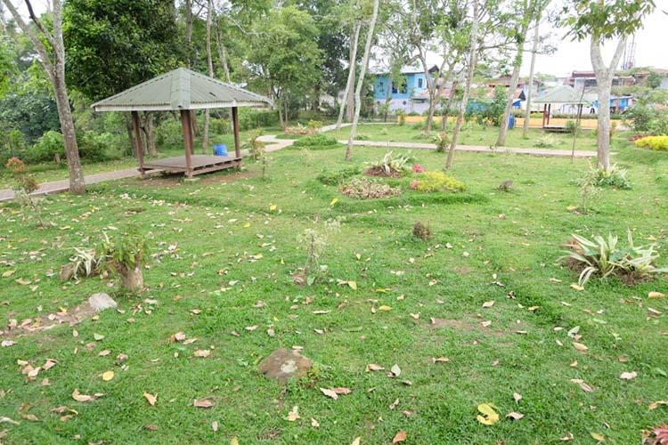 Sampah dedaunan di taman Ngarai Maaram Bukittinggi