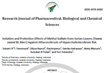Isolation and Protection Effects of Methyl Gallate from Surian Leaves (Toona sureni BL Merr) Against Atherosclerosis of Hypercholesterolemic Rat
