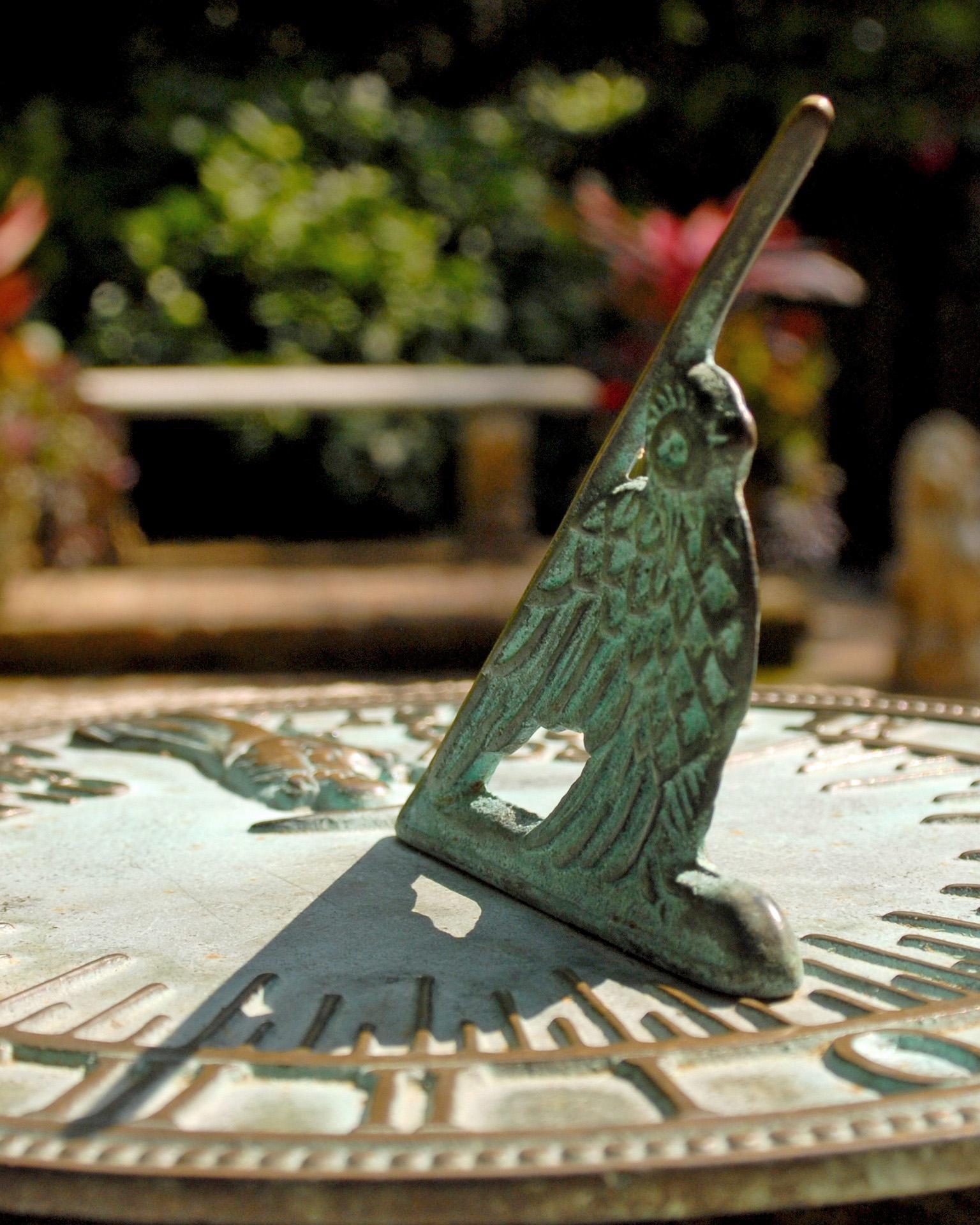 Tempus Fugit! Call in York Gardening!