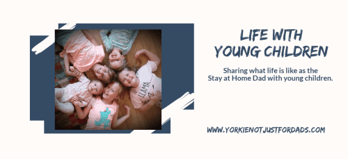 Featured image for the post life with young children