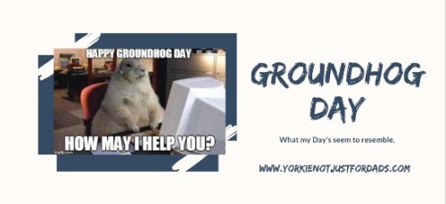 Featured image for the post groundhog day