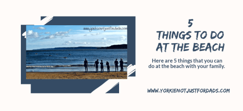 Featured image for the post 5 things to do at the beach
