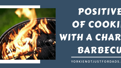 Featured image for post postives to a charcoal barbecue