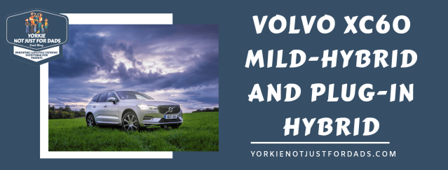 Featured image for the post volvo xc60 mild-hybrid and Plug-In hybrid.