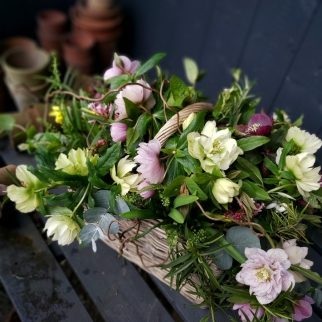 Hellebore Arrangement - Occasions Flowers