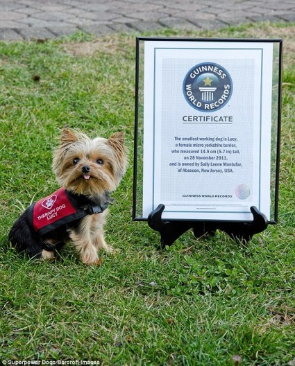 Lucy, the World's Smallest Therapist