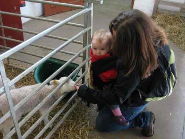 yorkshire farm temple newsam