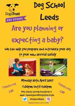Dog School Leeds to offer free & low cost dog training classes for