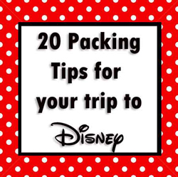 20-packing-tips-for-your-trip-to-Disney