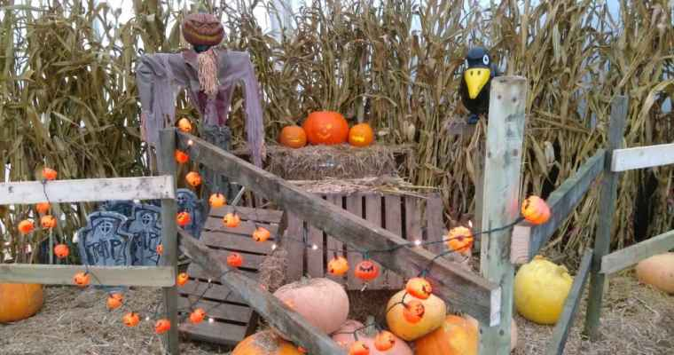 21 Halloween & October Half Term in Yorkshire 2018