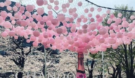 東京ミッドタウン2018桜のインスタ映えの撮影スポットはどこ?
