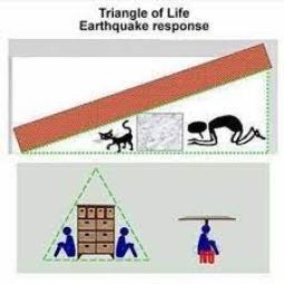 TriangleofLife Instagram posts (photos and videos) - Picuki.com